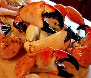 Best Key West Seafood Restaurants
