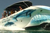 Key West Glassbottom Boat Tours