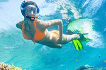 Key West Snorkeling Tours